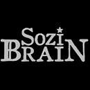 Sozi Brain
